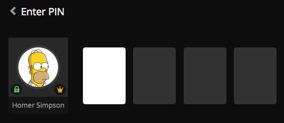 web-pin-input.png